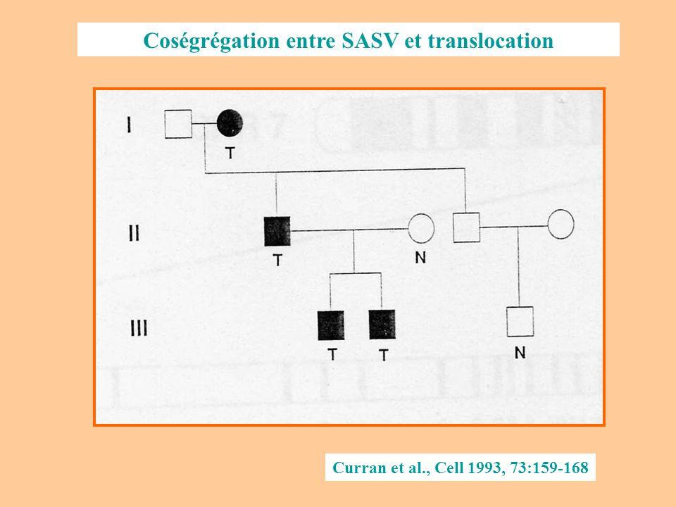 Coségrégation entre SASV et translocation