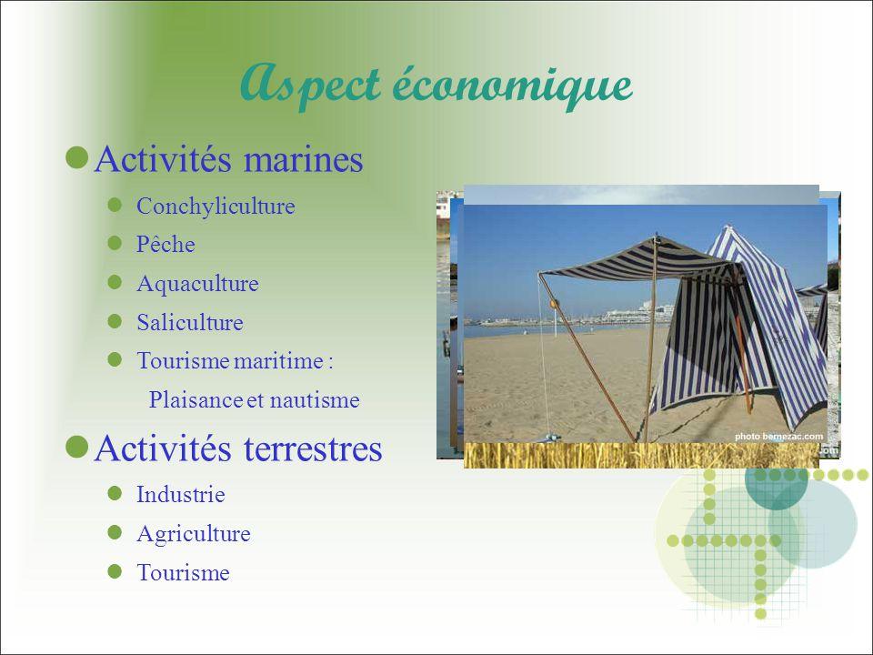 Aspect économique Activités marines Activités terrestres