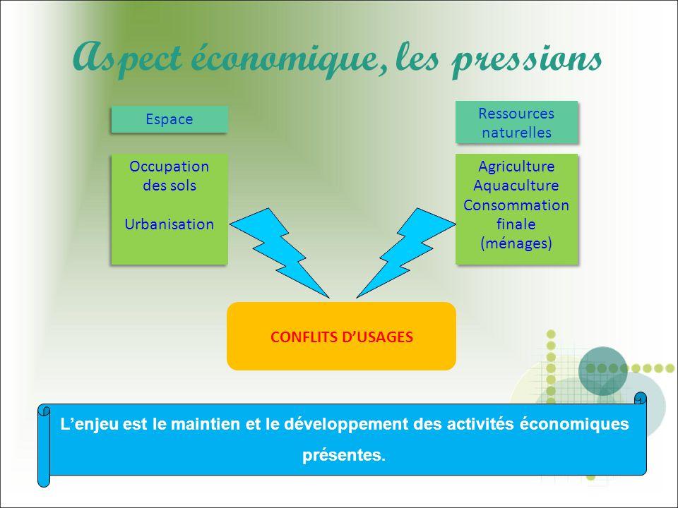 Aspect économique, les pressions