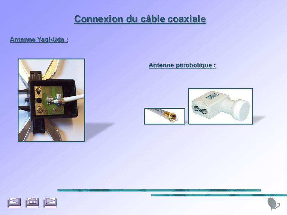 Connexion du câble coaxiale