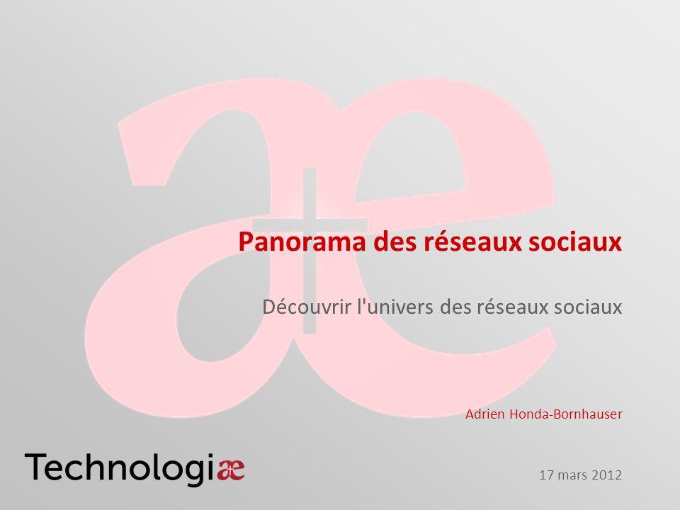 Panorama des réseaux sociaux