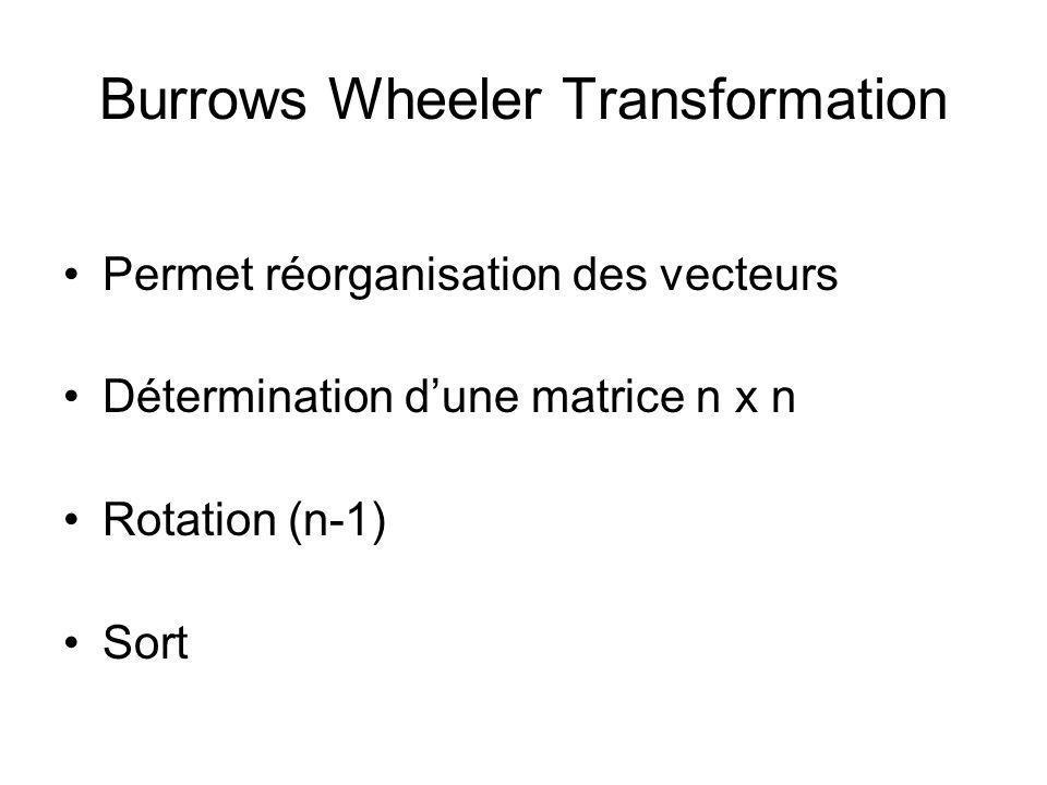 Burrows Wheeler Transformation