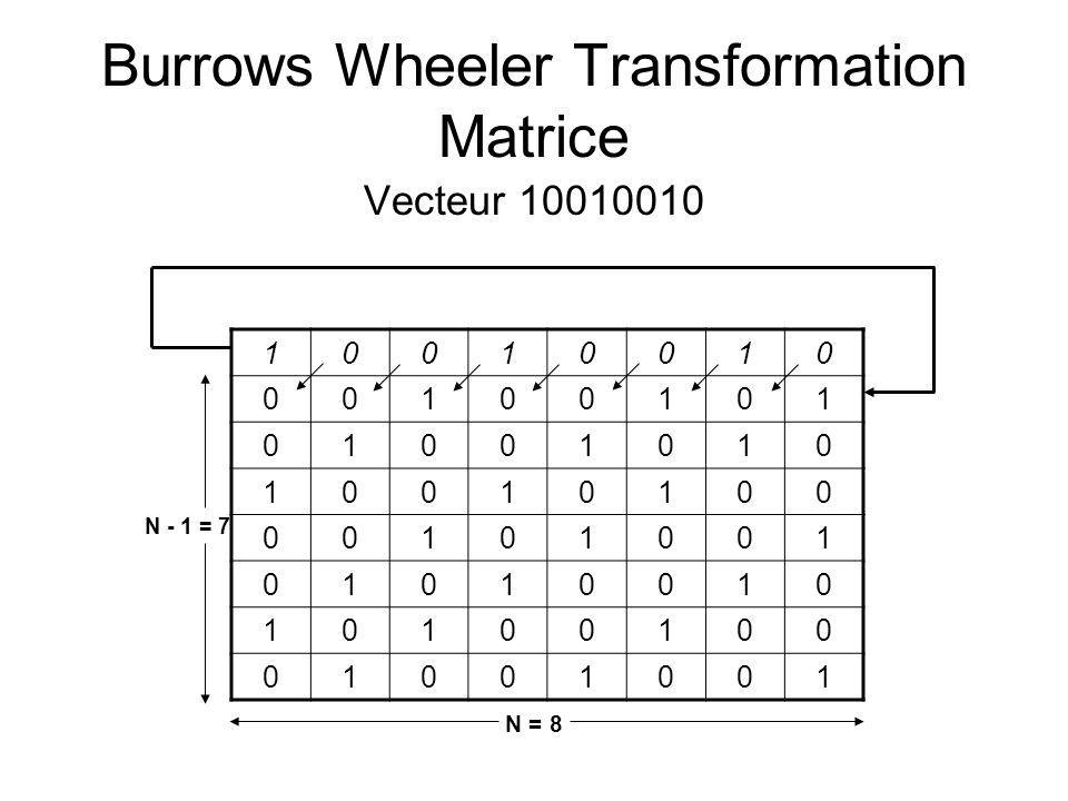 Burrows Wheeler Transformation Matrice