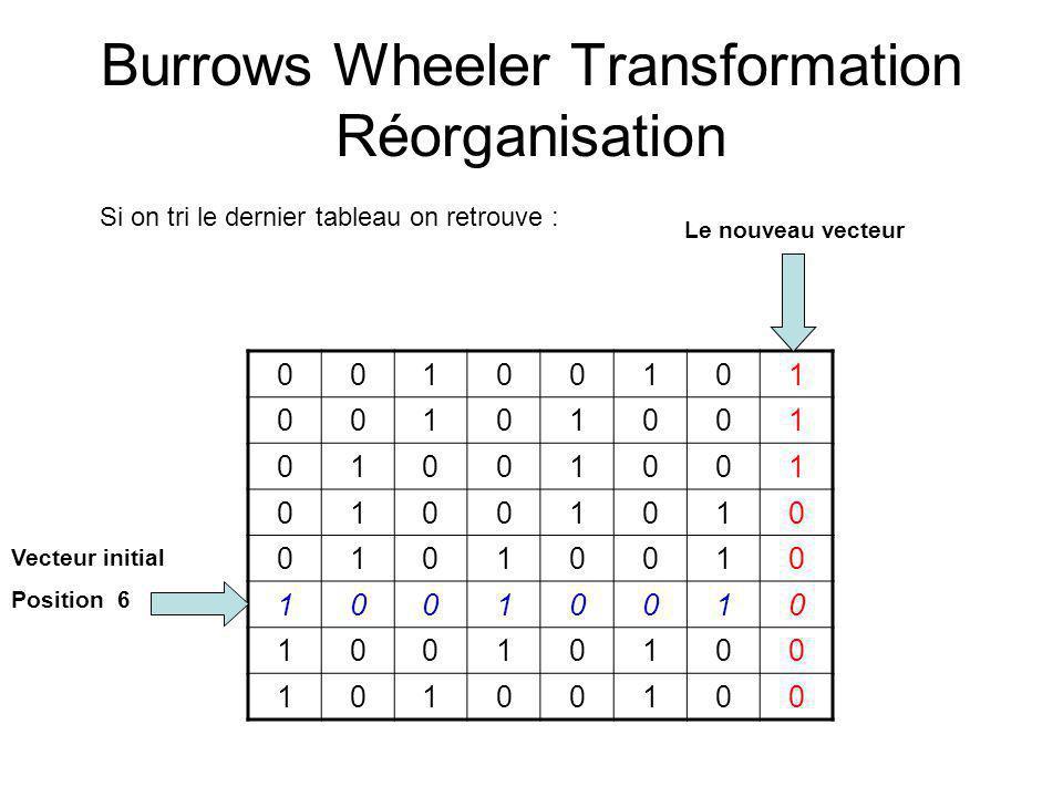 Burrows Wheeler Transformation Réorganisation