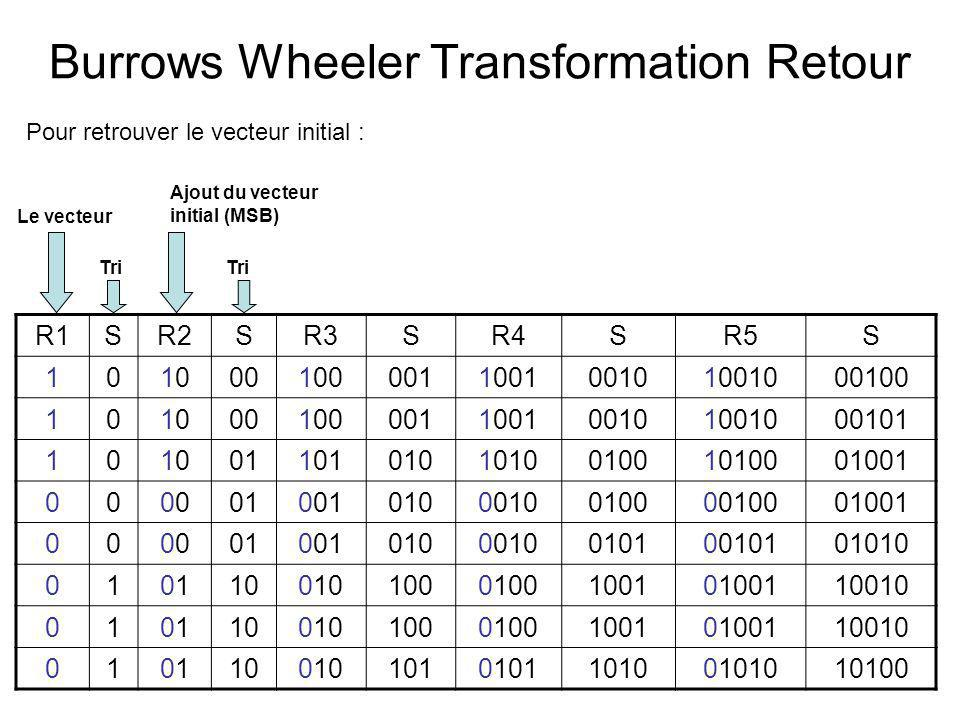 Burrows Wheeler Transformation Retour