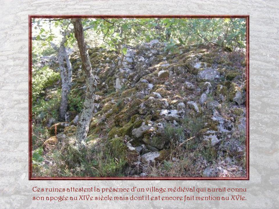 Ces ruines attestent la présence d'un village médiéval qui aurait connu son apogée au XIVe siècle mais dont il est encore fait mention au XVIe.