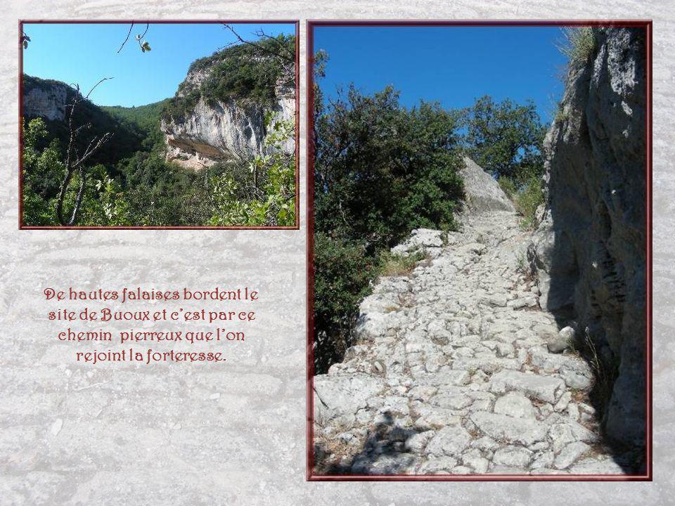 De hautes falaises bordent le site de Buoux et c'est par ce chemin pierreux que l'on rejoint la forteresse.