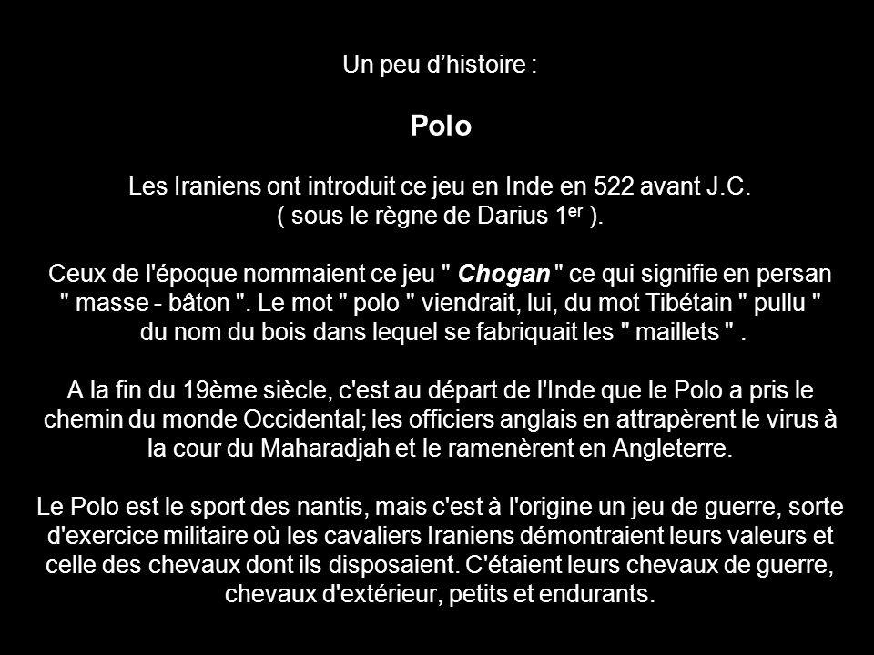 Un peu d'histoire : Polo Les Iraniens ont introduit ce jeu en Inde en 522 avant J.C.