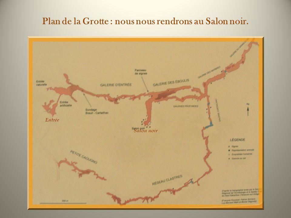 Plan de la Grotte : nous nous rendrons au Salon noir.