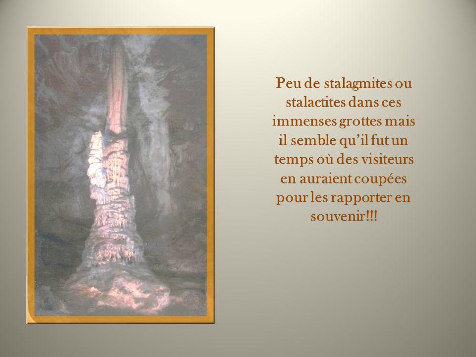 Peu de stalagmites ou stalactites dans ces immenses grottes mais il semble qu'il fut un temps où des visiteurs en auraient coupées pour les rapporter en souvenir!!!