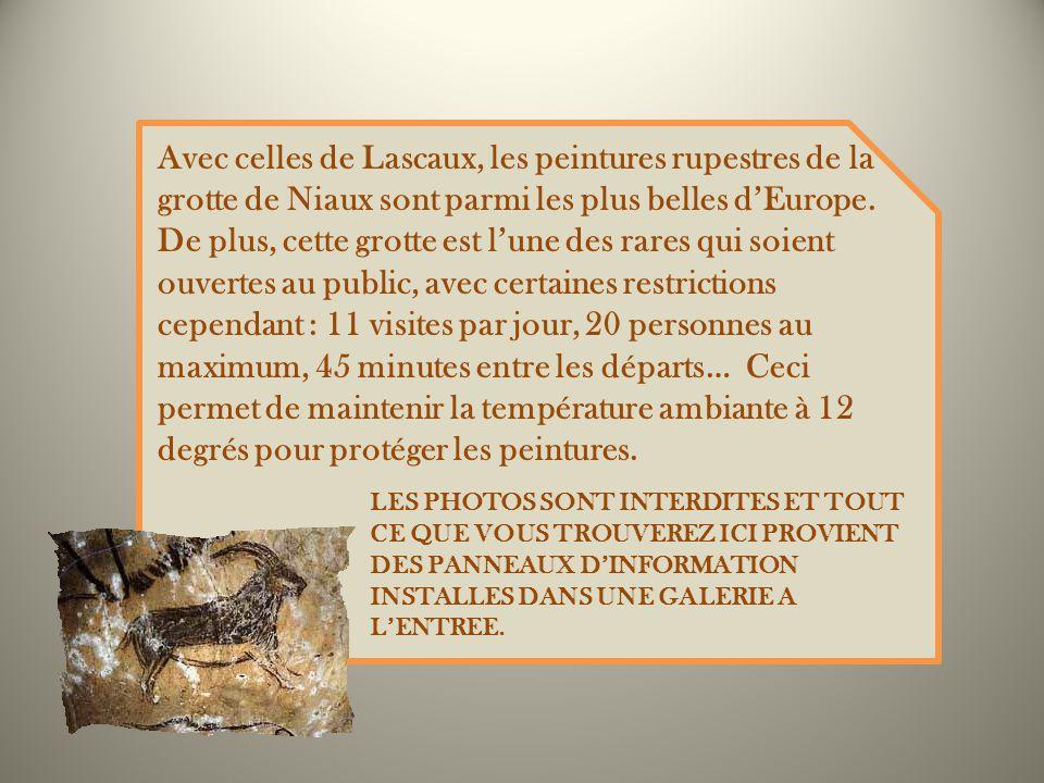 Avec celles de Lascaux, les peintures rupestres de la grotte de Niaux sont parmi les plus belles d'Europe. De plus, cette grotte est l'une des rares qui soient ouvertes au public, avec certaines restrictions cependant : 11 visites par jour, 20 personnes au maximum, 45 minutes entre les départs… Ceci permet de maintenir la température ambiante à 12 degrés pour protéger les peintures.