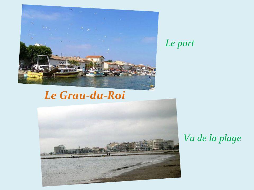 Le port Le Grau-du-Roi Vu de la plage