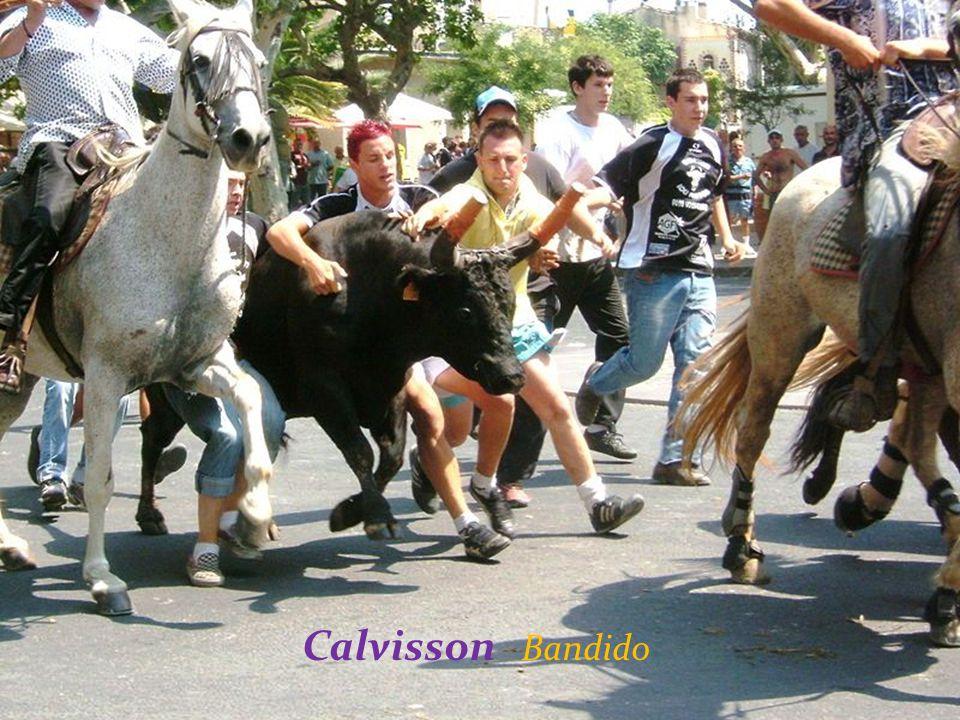 Calvisson Bandido