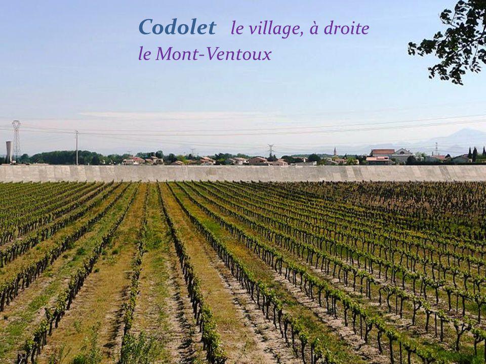 Codolet le village, à droite le Mont-Ventoux