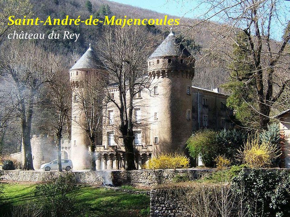 Saint-André-de-Majencoules château du Rey