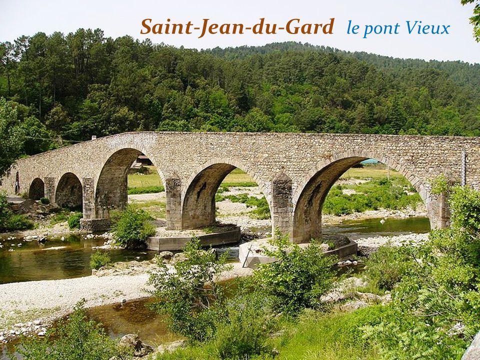 Saint-Jean-du-Gard le pont Vieux