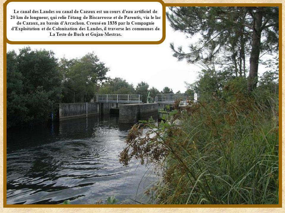 Le canal des Landes ou canal de Cazaux est un cours d eau artificiel de 20 km de longueur, qui relie l étang de Biscarrosse et de Parentis, via le lac de Cazaux, au bassin d Arcachon.