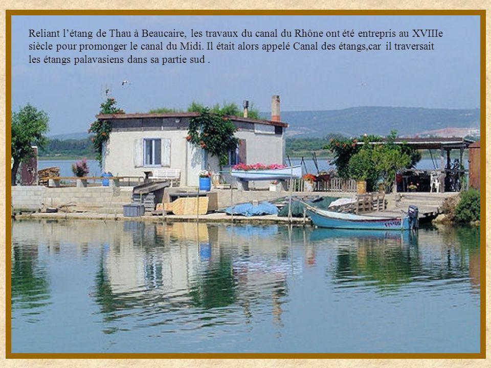 Reliant l'étang de Thau à Beaucaire, les travaux du canal du Rhône ont été entrepris au XVIIIe siècle pour promonger le canal du Midi.