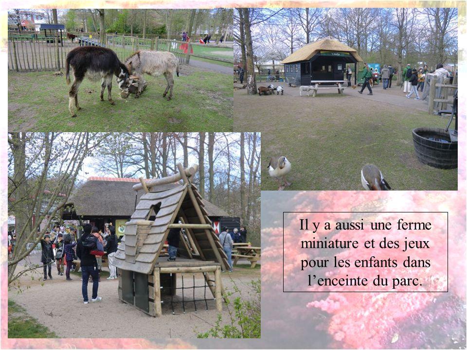 Il y a aussi une ferme miniature et des jeux pour les enfants dans l'enceinte du parc.