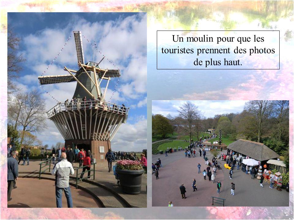 Un moulin pour que les touristes prennent des photos de plus haut.
