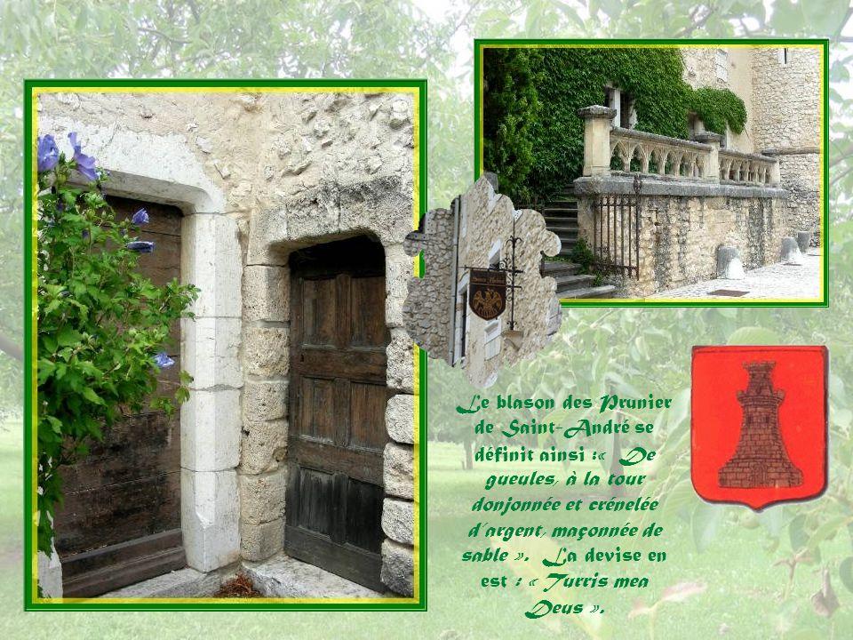 Le blason des Prunier de Saint-André se définit ainsi :« De gueules, à la tour donjonnée et crénelée d'argent, maçonnée de sable ».