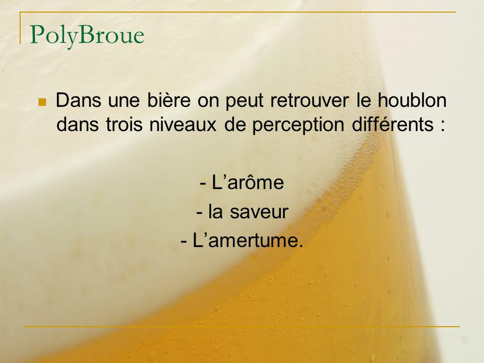 PolyBroue Dans une bière on peut retrouver le houblon dans trois niveaux de perception différents :