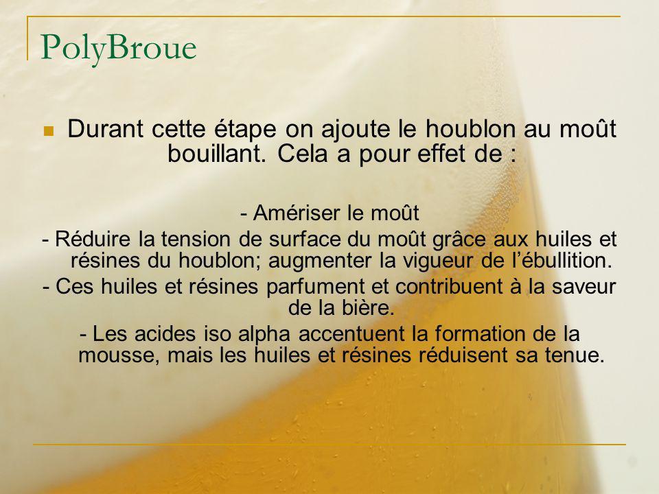 PolyBroue Durant cette étape on ajoute le houblon au moût bouillant. Cela a pour effet de : - Amériser le moût.