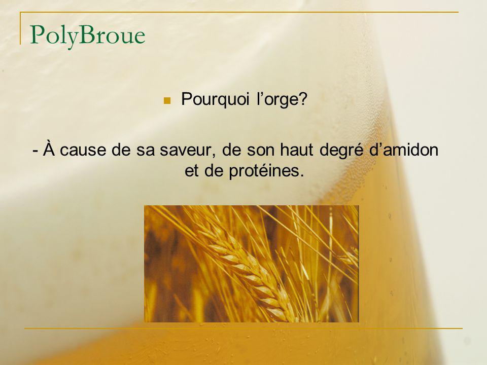 - À cause de sa saveur, de son haut degré d'amidon et de protéines.