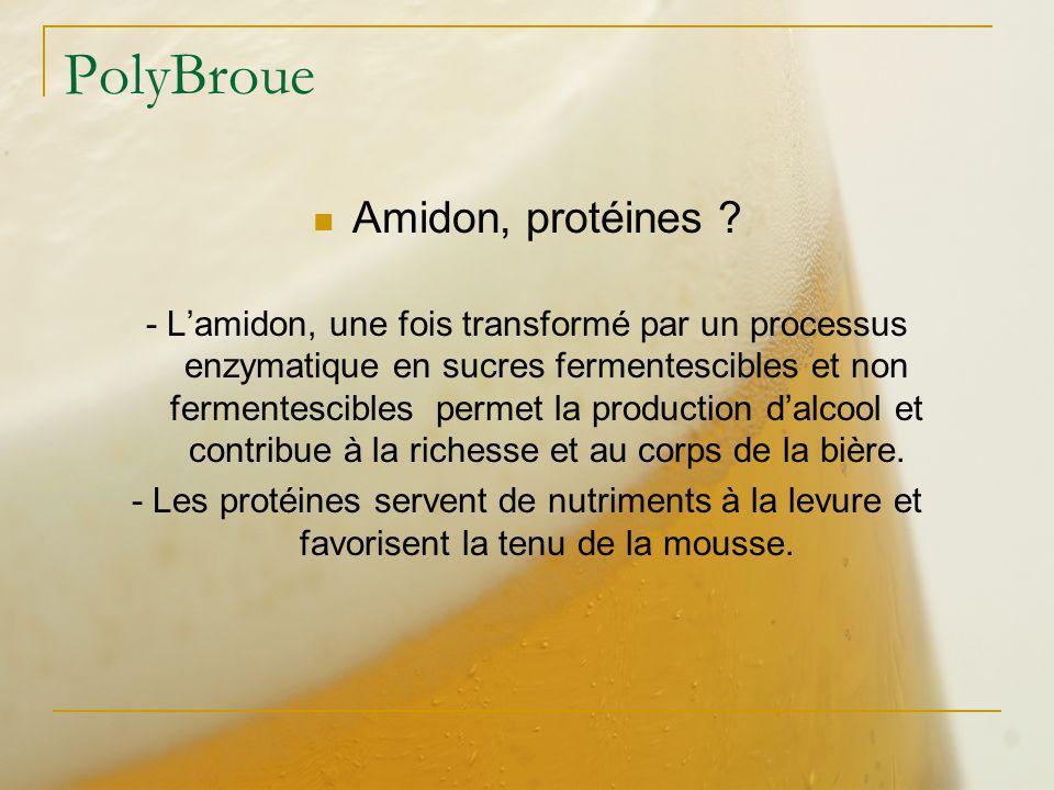PolyBroue Amidon, protéines