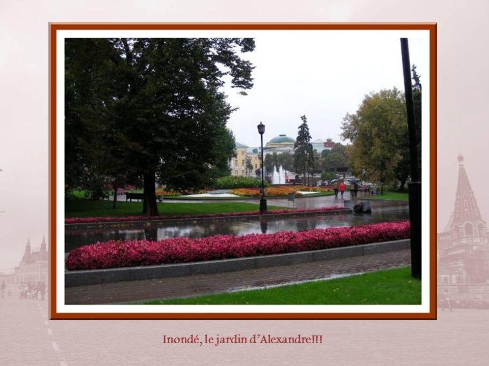Inondé, le jardin d'Alexandre!!!