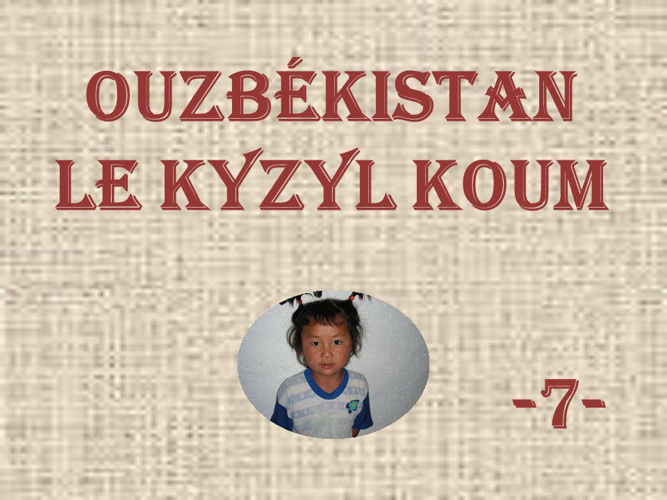 Ouzbékistan Le kyzyl koum -7-