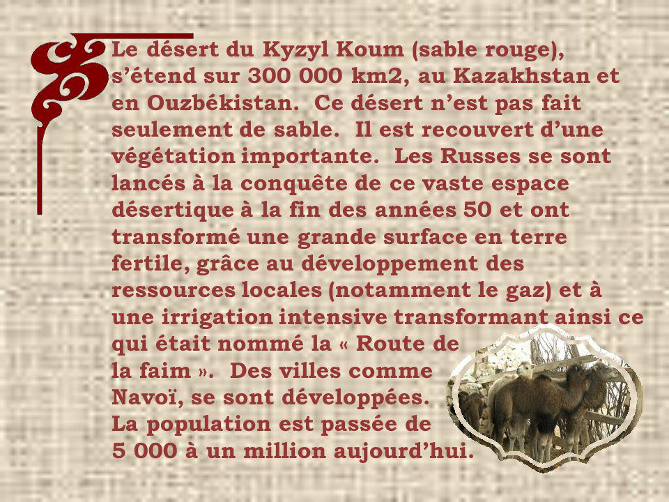Le désert du Kyzyl Koum (sable rouge), s'étend sur 300 000 km2, au Kazakhstan et en Ouzbékistan. Ce désert n'est pas fait seulement de sable. Il est recouvert d'une végétation importante. Les Russes se sont lancés à la conquête de ce vaste espace désertique à la fin des années 50 et ont transformé une grande surface en terre fertile, grâce au développement des ressources locales (notamment le gaz) et à une irrigation intensive transformant ainsi ce qui était nommé la « Route de