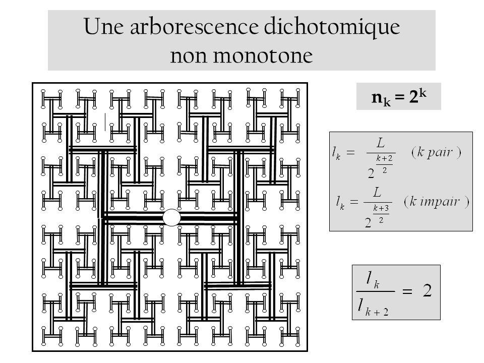 Une arborescence dichotomique non monotone