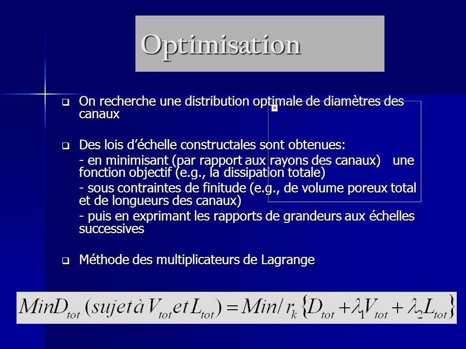 Optimisation On recherche une distribution optimale de diamètres des canaux. Des lois d'échelle constructales sont obtenues: