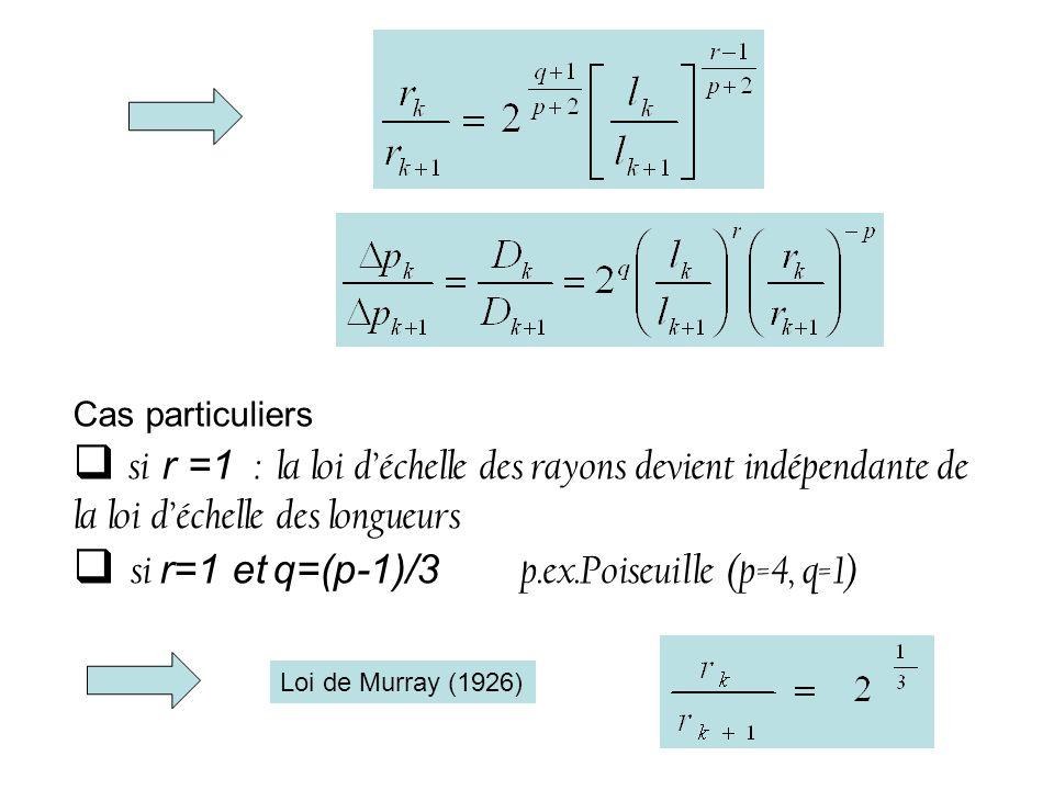 si r=1 et q=(p-1)/3 p.ex.Poiseuille (p=4, q=1)