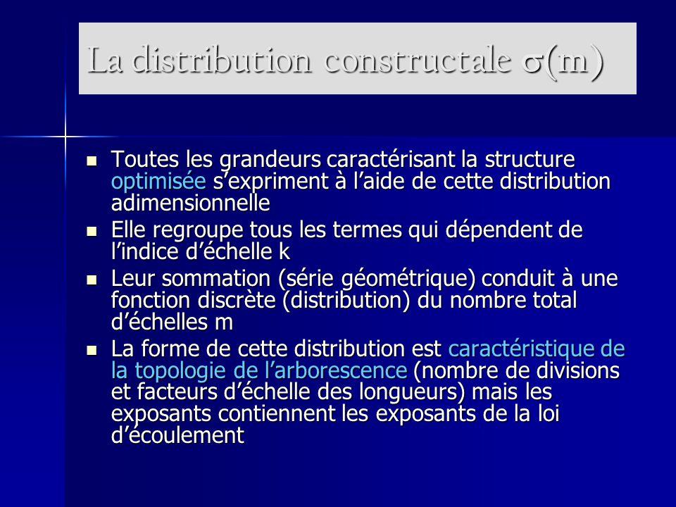 La distribution constructale s(m)