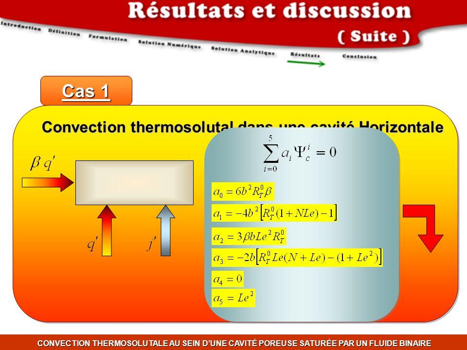 Convection thermosolutal dans une cavité Horizontale