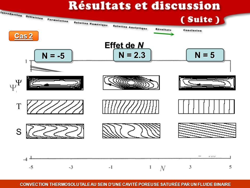Effet de N Y T S N = -5 N = 2.3 N = 5 Cas 2