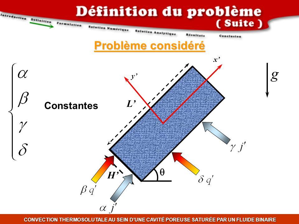 g Problème considéré L' Constantes q H' x' y'