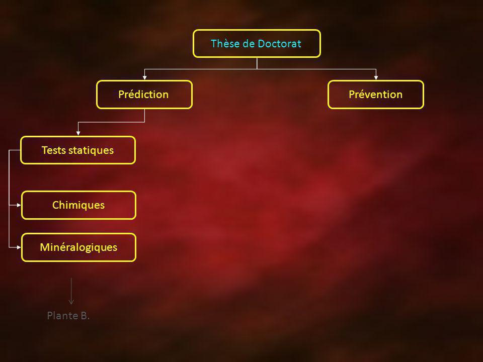 Thèse de Doctorat Prédiction Prévention Tests statiques Chimiques Minéralogiques Plante B.