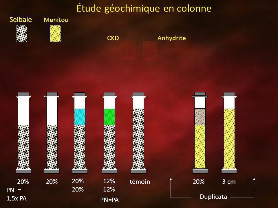 Étude géochimique en colonne