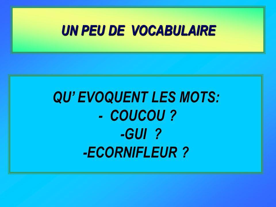 QU' EVOQUENT LES MOTS: - COUCOU -GUI -ECORNIFLEUR