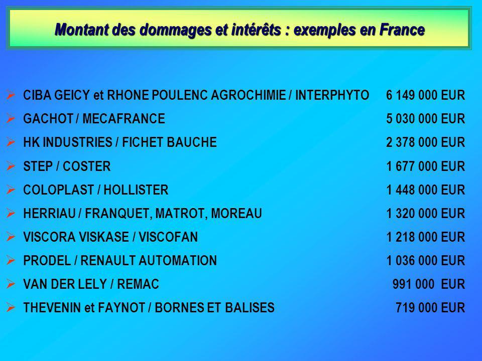 Montant des dommages et intérêts : exemples en France