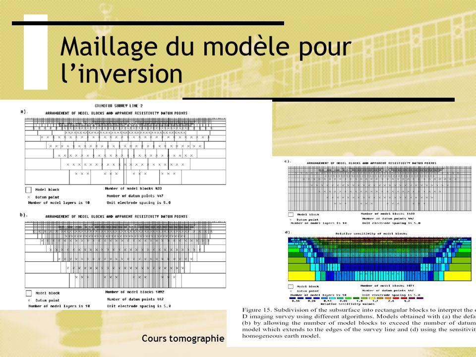 Maillage du modèle pour l'inversion
