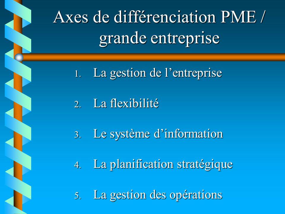 Axes de différenciation PME / grande entreprise