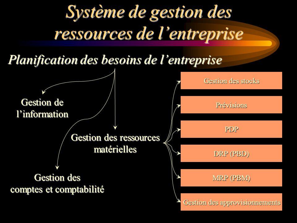 Système de gestion des ressources de l'entreprise