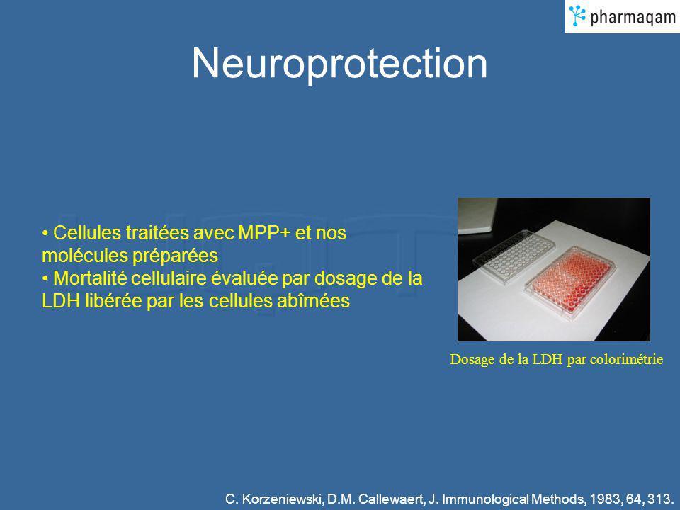 Neuroprotection Cellules traitées avec MPP+ et nos molécules préparées