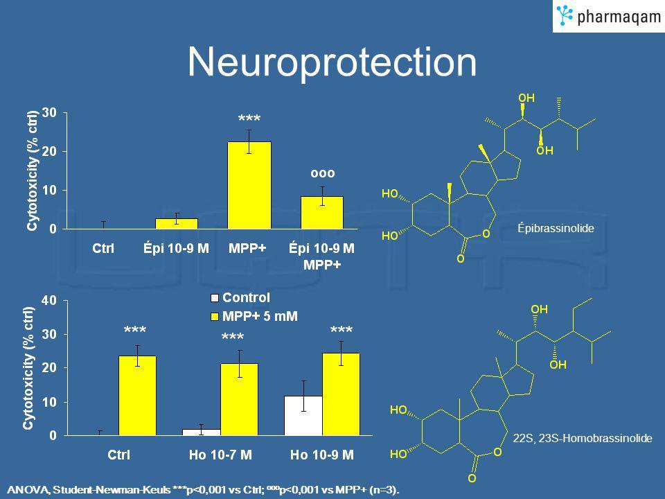 Neuroprotection Épibrassinolide 22S, 23S-Homobrassinolide