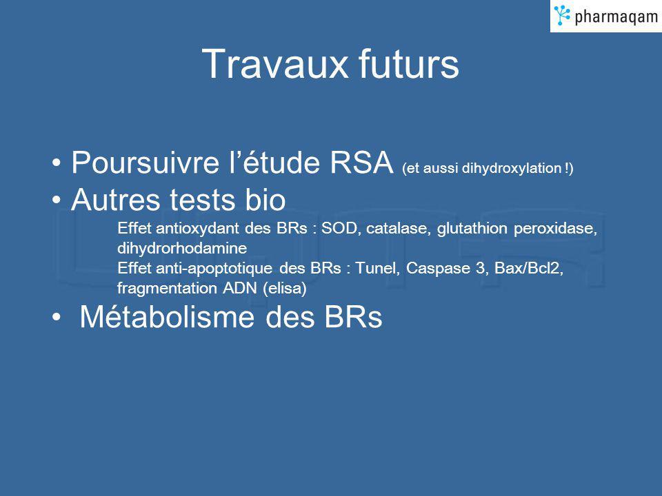Travaux futurs Poursuivre l'étude RSA (et aussi dihydroxylation !)