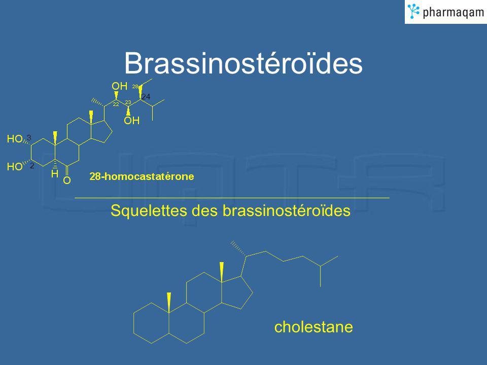 Brassinostéroïdes 24 3 2 Squelettes des brassinostéroïdes cholestane